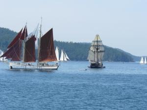 Schooners Under Sail
